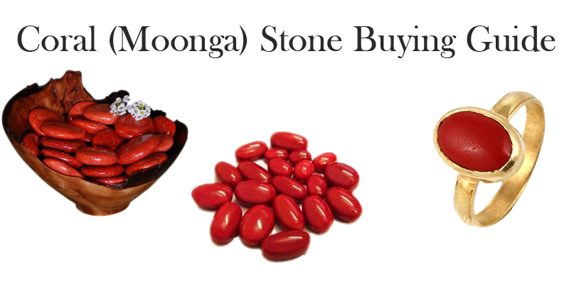 Buy Coral Stone in South Delhi